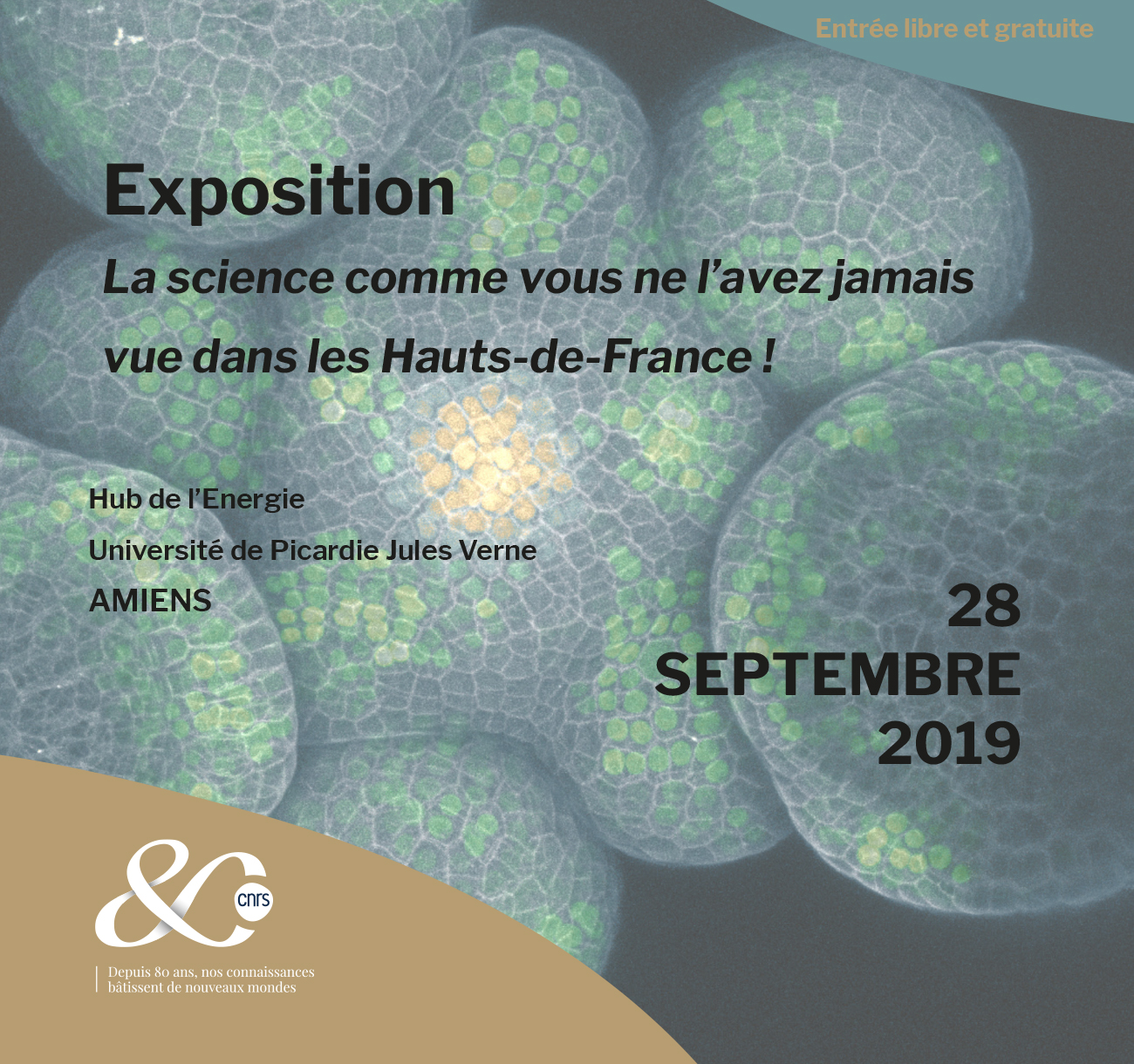 La science comme vous ne l'avez jamais vue dans les Hauts-de-France ! – Amiens