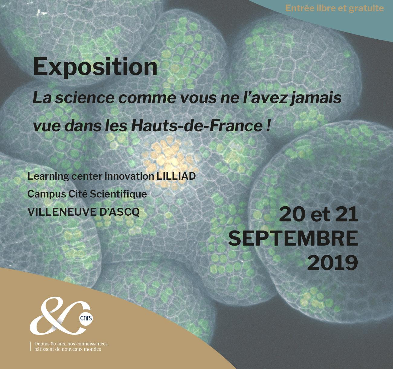 La science comme vous ne l'avez jamais vue dans les Hauts-de-France ! – Villeneuve d'Ascq